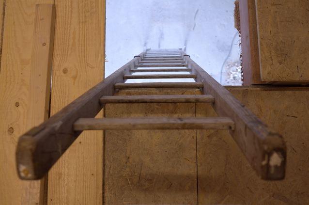 Schonmaier ladder.jpg