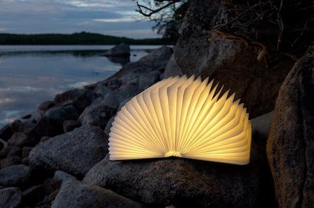 Schonmaier light.jpg