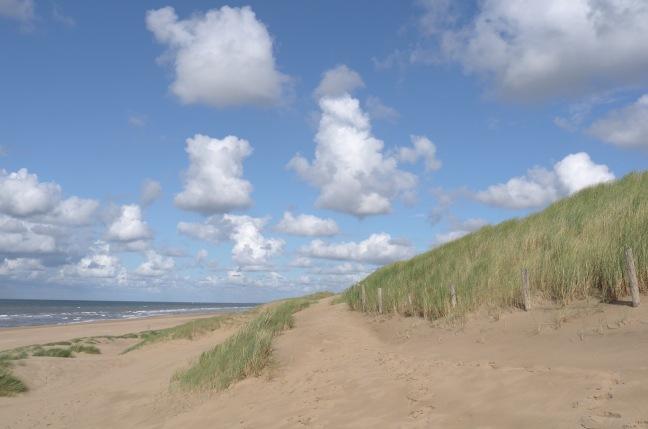 Schonmaier shore1.jpg