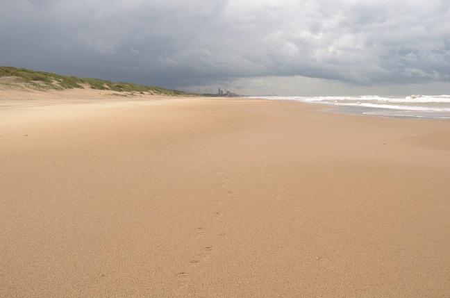 Schonmaier sand.jpg