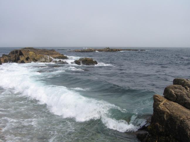 Schonmaier Coast.jpg