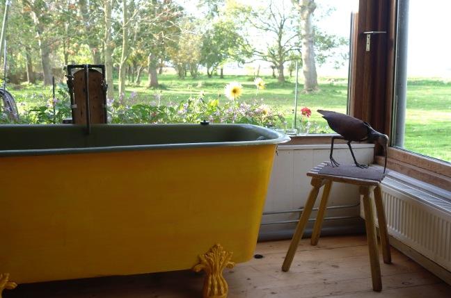 Schonmaier Ed van der Elsken yellow bath tub.jpg